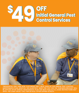 Rodent Control Experts Charlotte